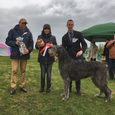 Ausstellung  CAC  Greppin (DE) Will Scarlet dei Mangialupi got BOB and Reserve Best in Show