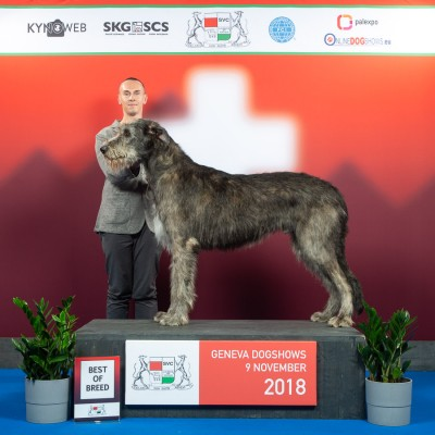 International Dog Show Geneva 2018  - I  Charles dei Mangialupi BEST IN SHOW 3rd